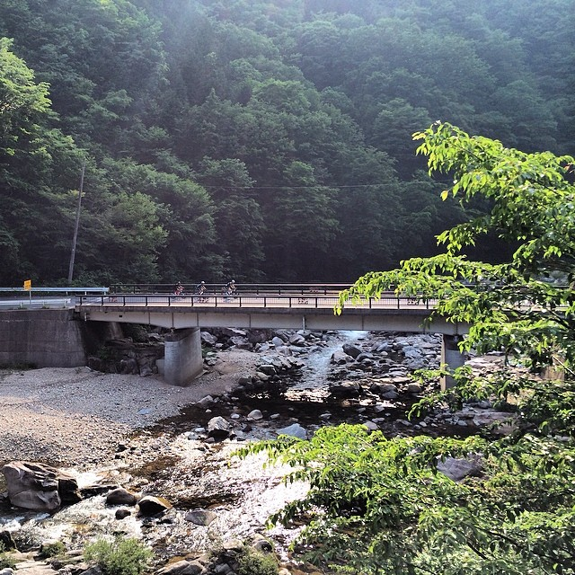 Magic! #roadtrippingjapan - via CyclingTips Instagram feed
