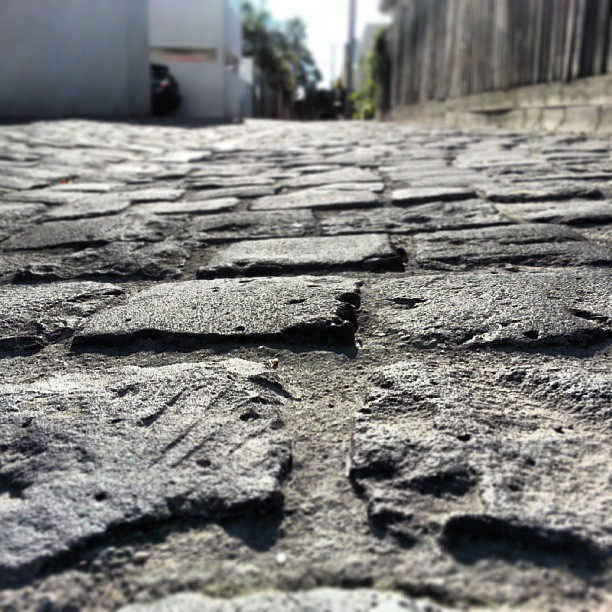Can never resist the urge to take a photo of  cobbles. Even if they are in my back lane