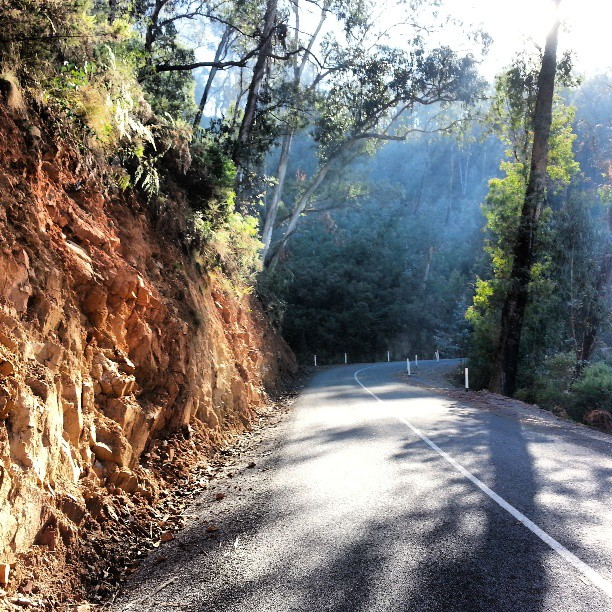 If you've never  ridden Stanley rd to Beechworth, here's what you're missing #wymtm (Instagram)