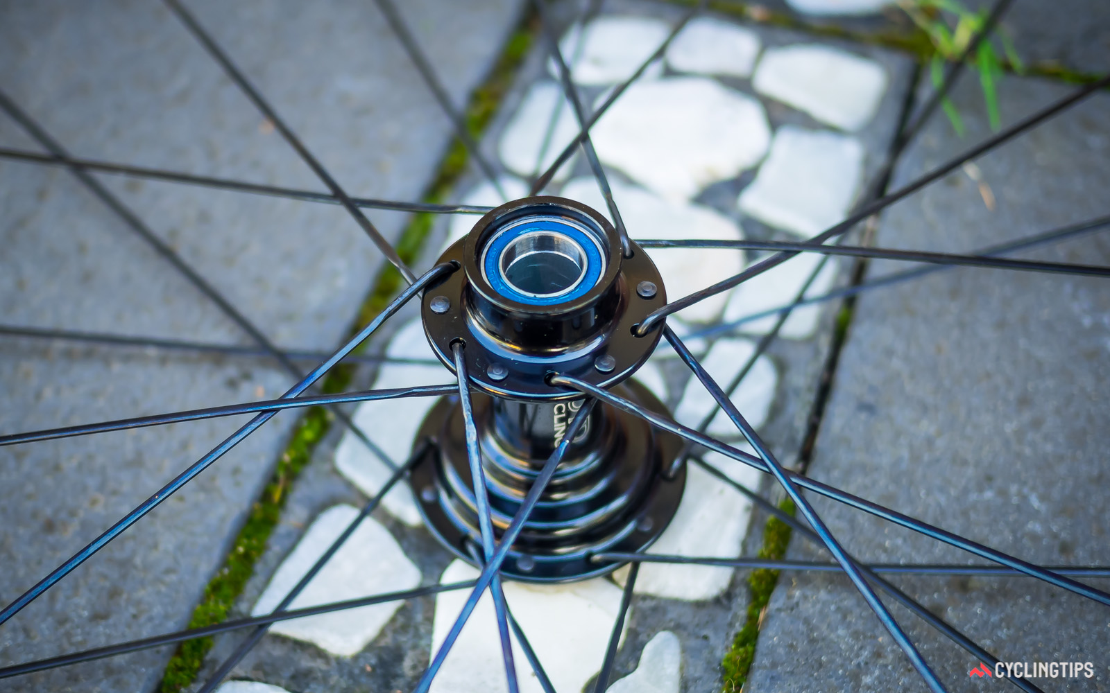 Like the front bearings, the rear bearing on the non-drive side of the hub sits close to the dropout of the frame.
