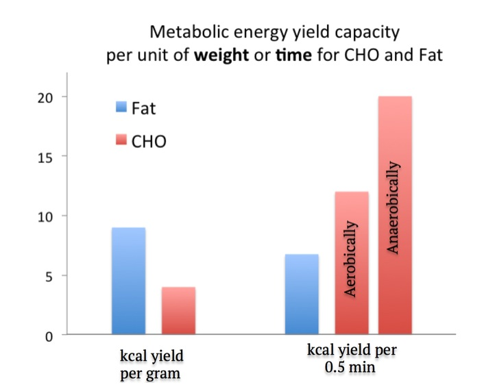 Figure 4. Comparison of energy yield capacity per unit of weight and time for CHO and Fat. Even though fat contains more energy per gram, CHO can generate more energy per unit of time. Values are approximate, the energy yield capacity per unit of time will depend on the fitness level of the athlete and nutritional status.