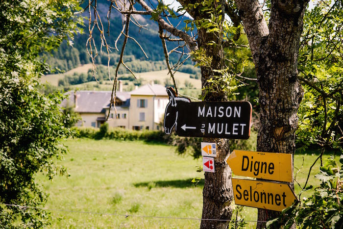 France day 1-6