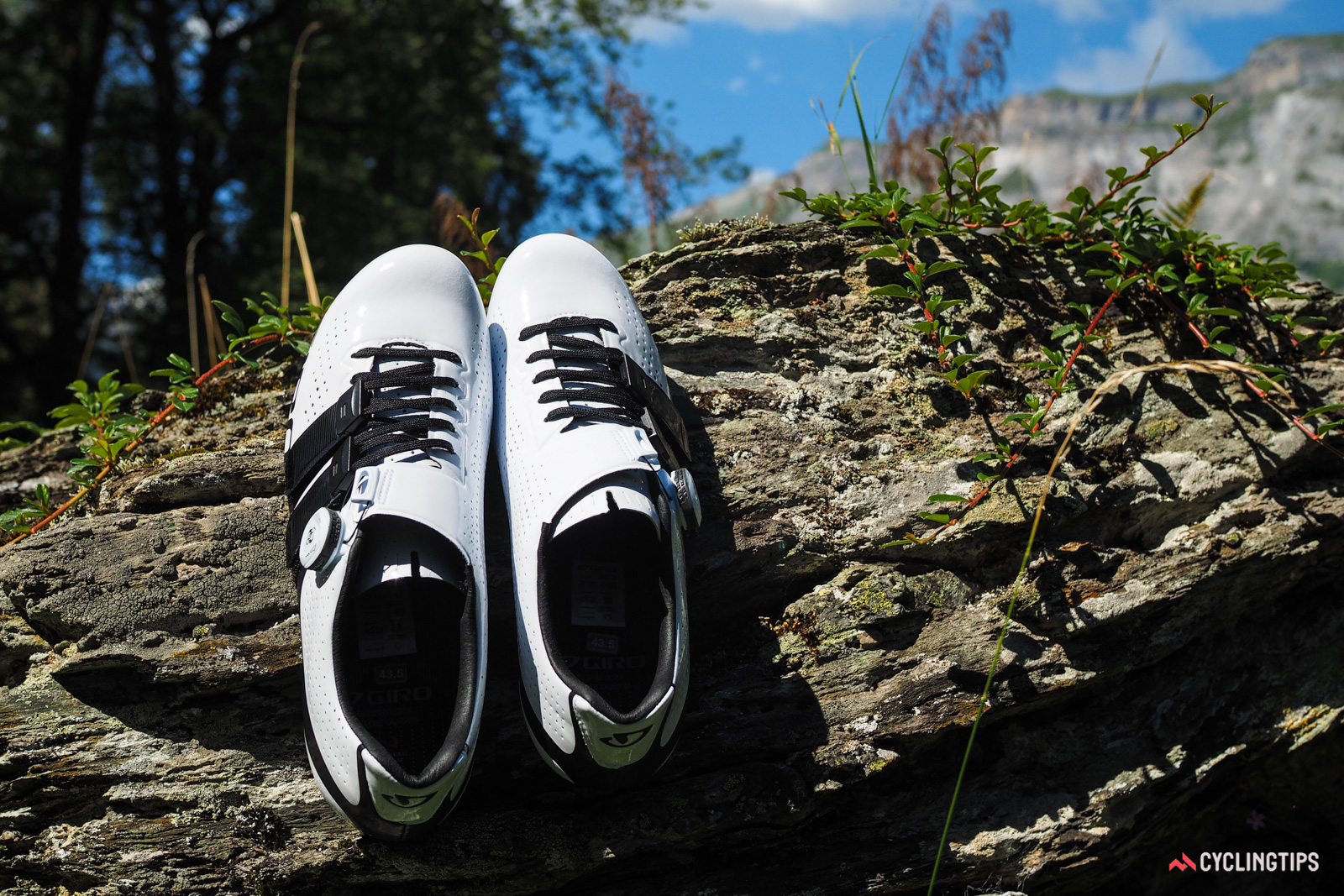 Giro uses the same last for the Factor Techlace as on its other road shoes, which means a medium volume and width throughout, a medium-volume toe box, and a refreshingly modest taper up front. The heel cup is narrow enough for a good hold, but without feeling overly constrictive.
