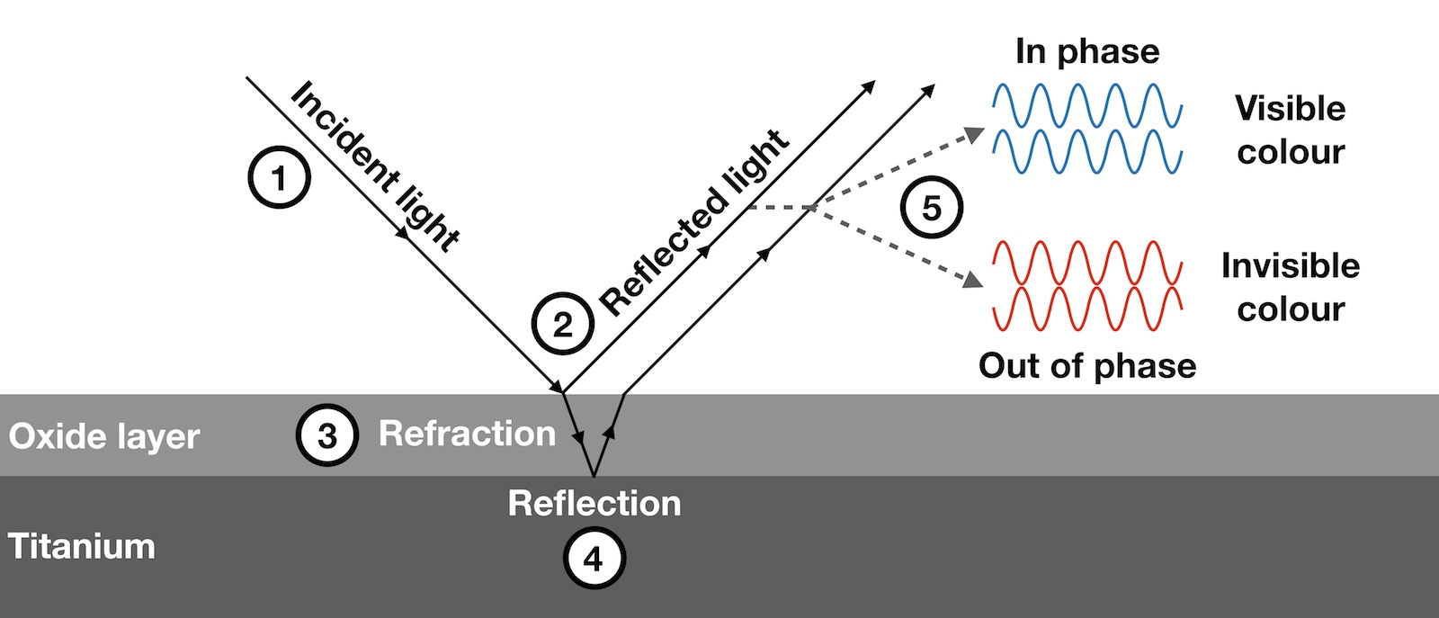Depiction of light refraction and reflection leading to the formation of interference colours