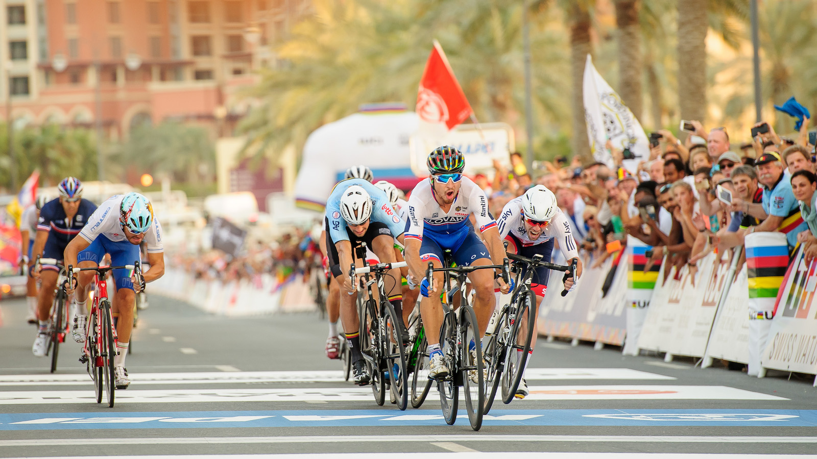 """Chentil Mohan, India. """"Defending his Rainbow Jersey at 2016 UCI Worlds in Doha, Peter Sagan pipped Boonen and a wheelie popping Cav to his second World title."""" DSLR. @sports_anonymous"""