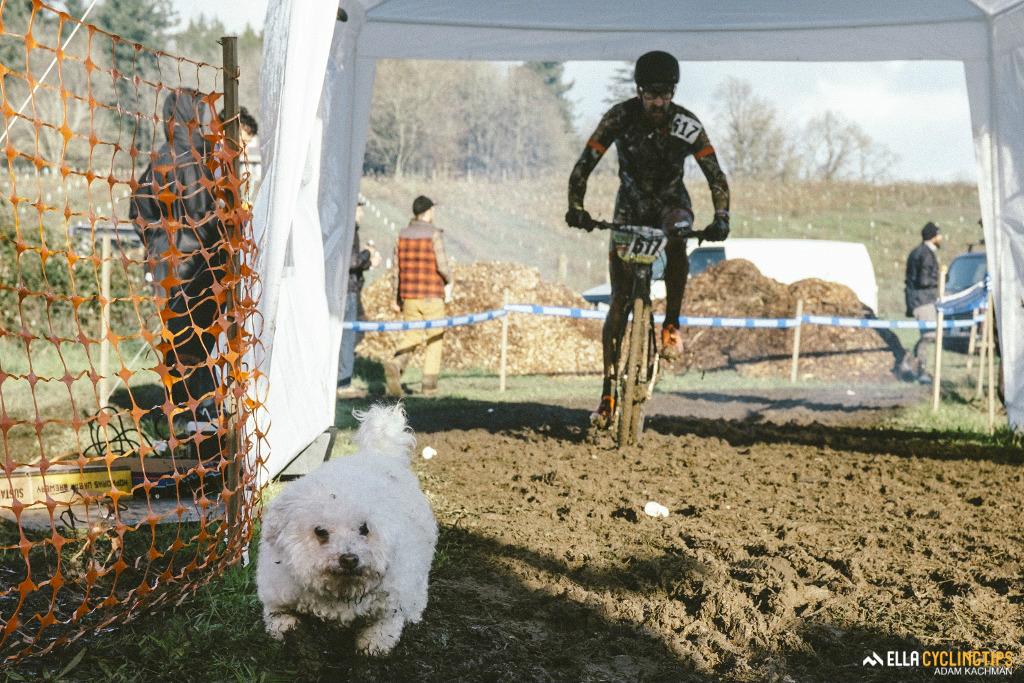 A dog joined in on the muddy fun