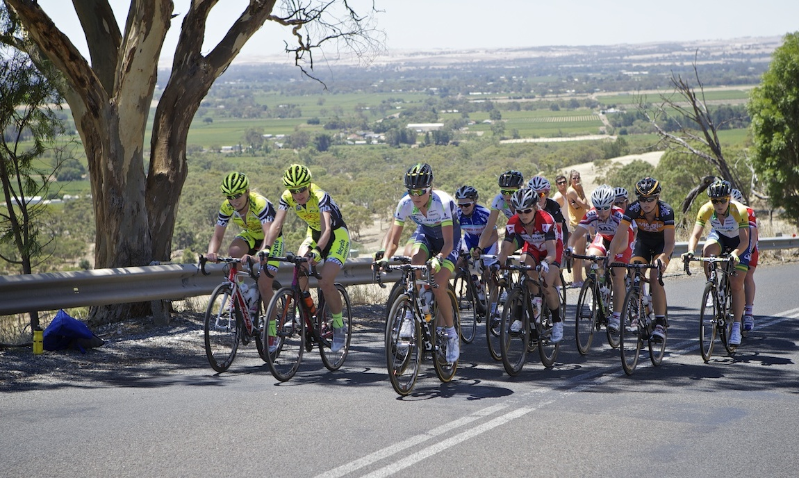 A diminished peloton climbs Menglers Hill on stage 2.