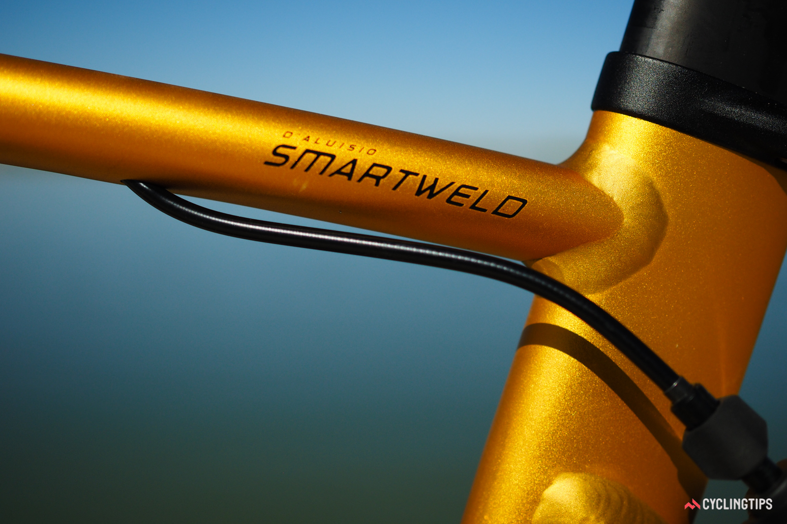 """The """"DSL"""" in the bike's name pays homage to Chris d'Aluisio, the Specialized engineer who developed the original SmartWeld concept."""