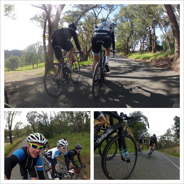 Gorgeous day for a ride out near Kinglake (Instagram)